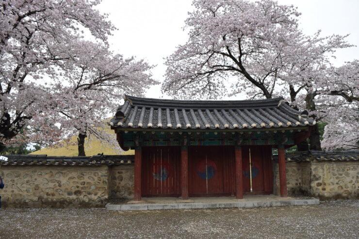 Gyeongju Travel Itinerary